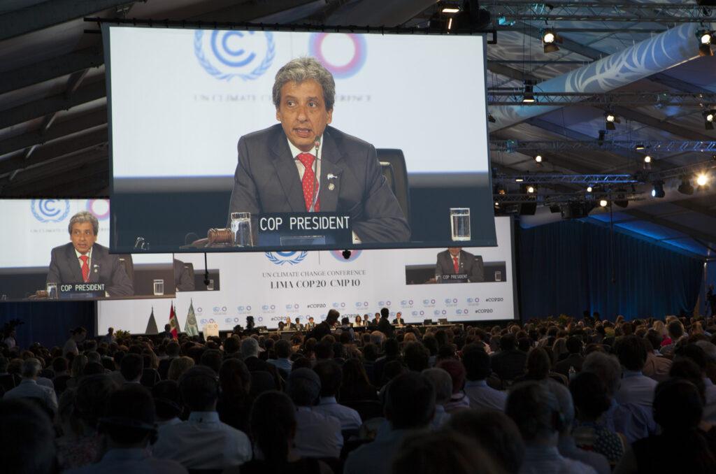 cop20-plenariafinal