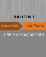 thumb_capa_boletimamazoniaempauta_ipam_maio2014_resize_275_200