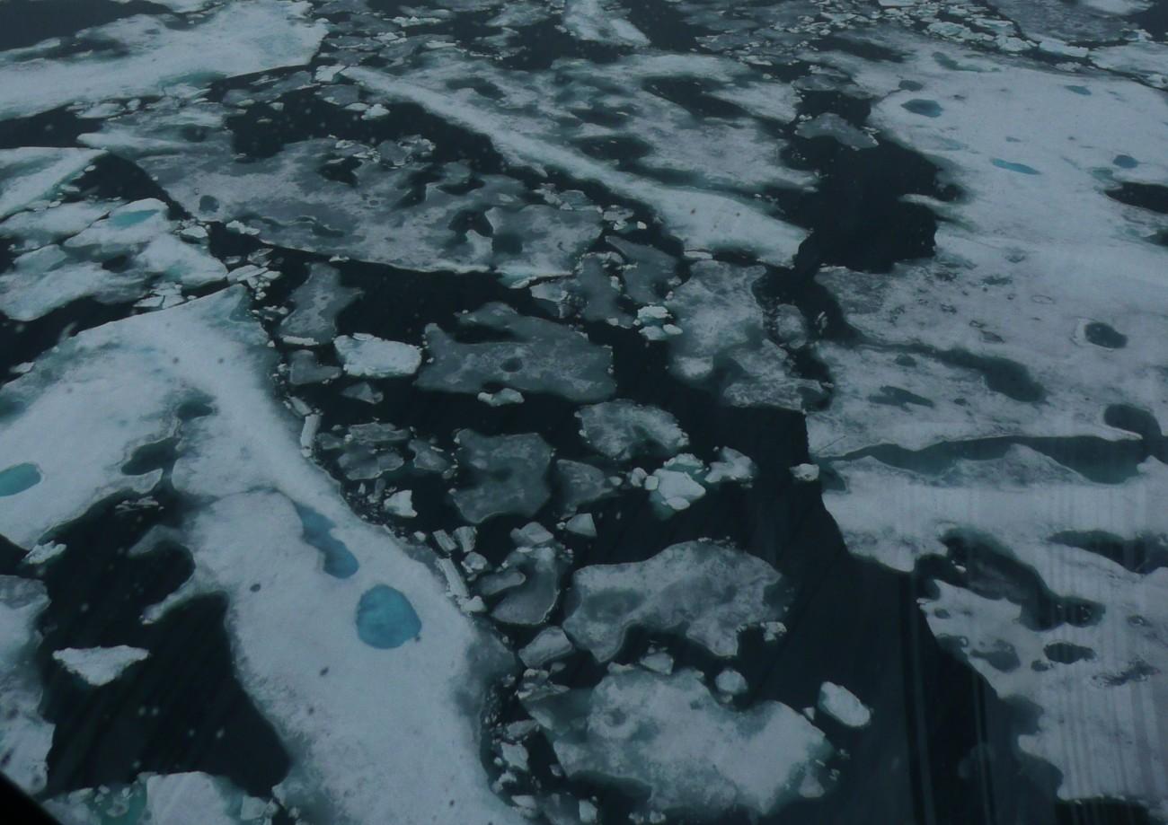Gelo marinho derrete no verão no Oceano Ártico (Foto: Claudio Angelo/OC)