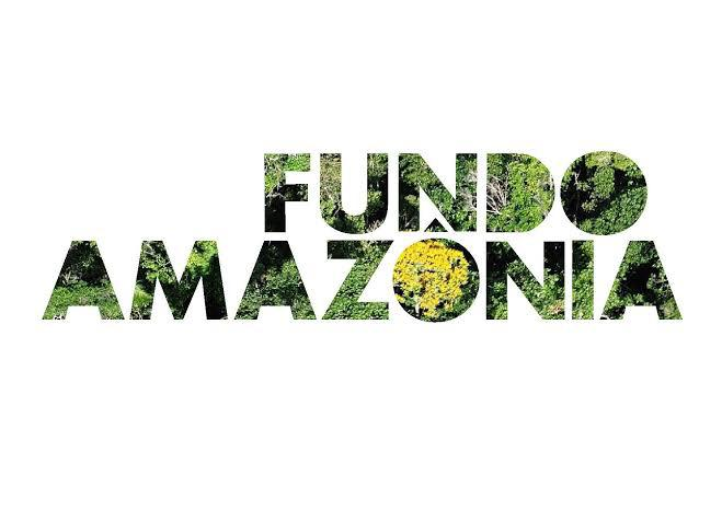 Logomarca Fundo Amazônia - Logo Floresta