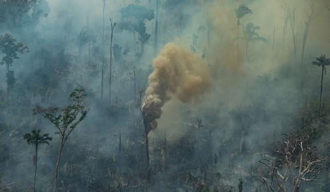Queimada em Porto Velho, Rondônia - Foto: Victor Moriyama / Greenpeace
