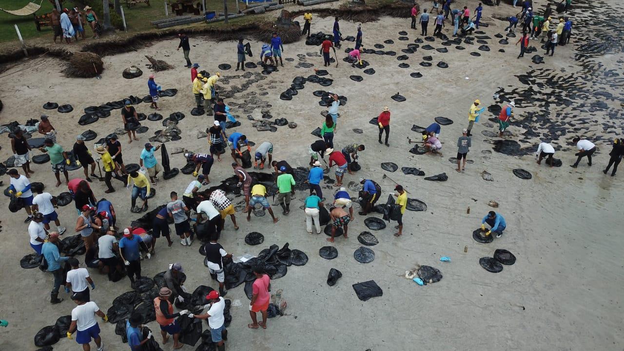 Voluntários limpam Praia dos Carneiros, em Tamandaré, PE (Foto: PCR/APACC)
