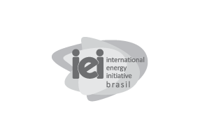 International Energy Initiative